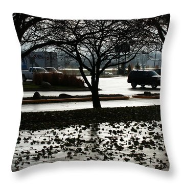 Stormy Reflection Throw Pillow by Linda Shafer