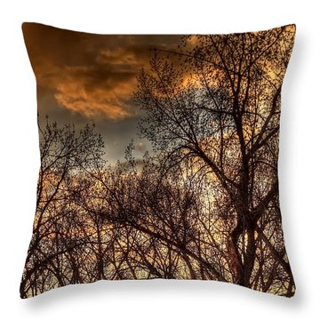 Stormy Sunset 14151 Throw Pillow