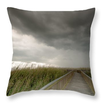 Stormy Walk Throw Pillow