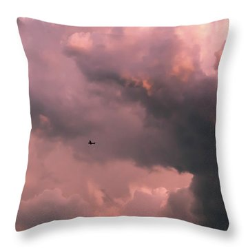 Stormy Weather Throw Pillow by Carolyn Dalessandro