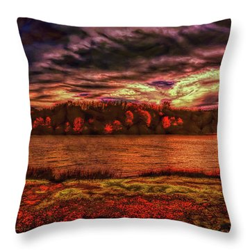 Throw Pillow featuring the photograph Stormy Weather by John M Bailey