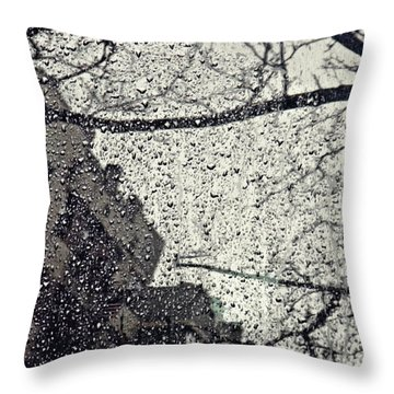Stormy Weather Throw Pillow by Sarah Loft