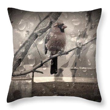 Stormy Window Throw Pillow