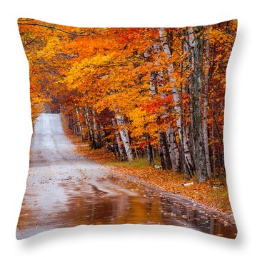 Straight Color Throw Pillow