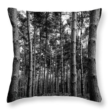 Throw Pillow featuring the photograph Straight Up by Nick Bywater