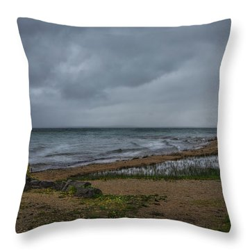 Straits Of Mackinac Throw Pillow