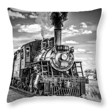 Throw Pillow featuring the photograph Strasburg Canadian National 89 by Nick Zelinsky