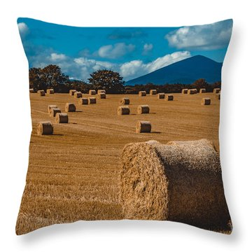 Straw Bale In A Field Throw Pillow