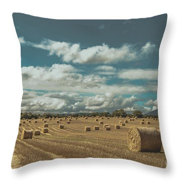 Straw Bales In A Field 3 Throw Pillow