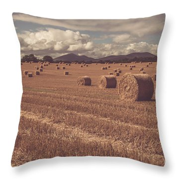 Straw Bales In A Field 4 Throw Pillow