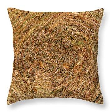 Straw Throw Pillow by Michal Boubin
