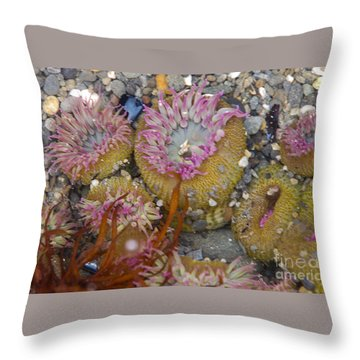 Strawberry Anemonies Throw Pillow