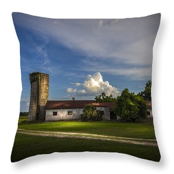 Strawberry County Throw Pillow