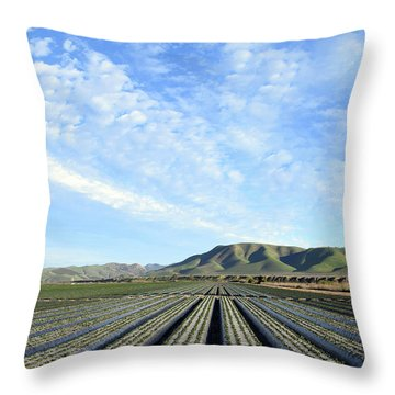 Throw Pillow featuring the photograph Strawberry Fields Forever 2 by Floyd Snyder