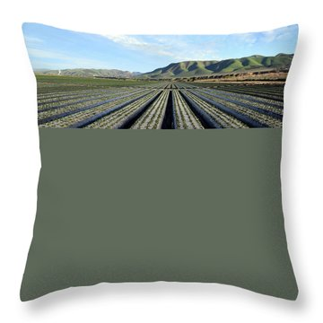Throw Pillow featuring the photograph Strawberry Fields Forever 3 by Floyd Snyder