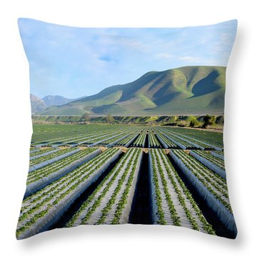 Throw Pillow featuring the photograph Strawberry Fields Forever by Floyd Snyder