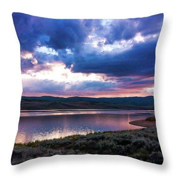 Strawberry Sunset Throw Pillow