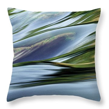 Throw Pillow featuring the photograph Stream 3 by Dubi Roman
