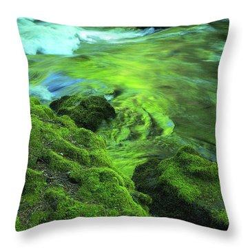 Stream Above Whitehorse Falls Throw Pillow