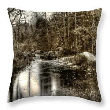 Throw Pillow featuring the photograph Stream I by Greg DeBeck