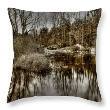 Throw Pillow featuring the photograph Stream II by Greg DeBeck