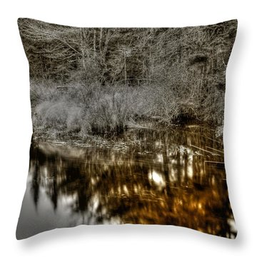 Throw Pillow featuring the photograph Stream IIi by Greg DeBeck