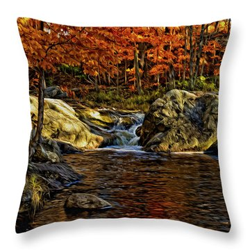 Stream In Autumn 57 In Oil Throw Pillow by Mark Myhaver