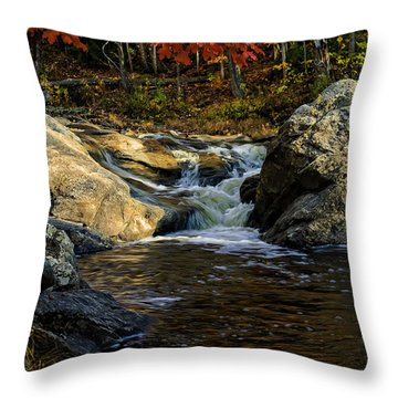 Stream In Autumn No.17 Throw Pillow