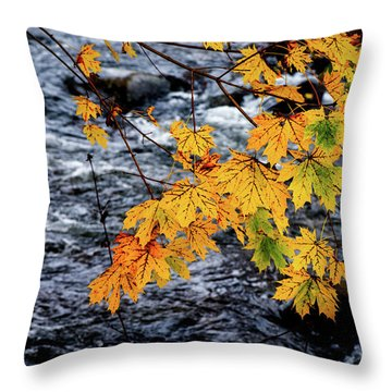 Stream In Fall Throw Pillow