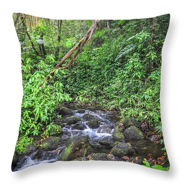 Stream In The Rainforest Throw Pillow