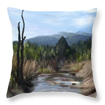Stream Throw Pillow by Ivana Westin