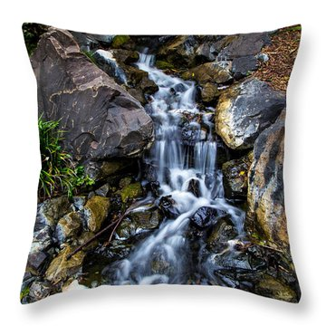 Throw Pillow featuring the photograph Stream by Keith Hawley