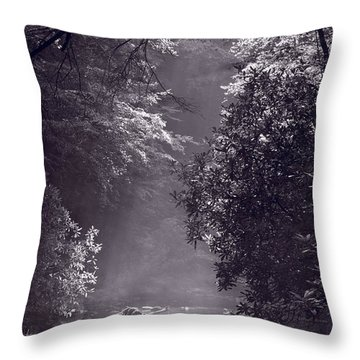 Stream Light B W Throw Pillow by Steve Gadomski