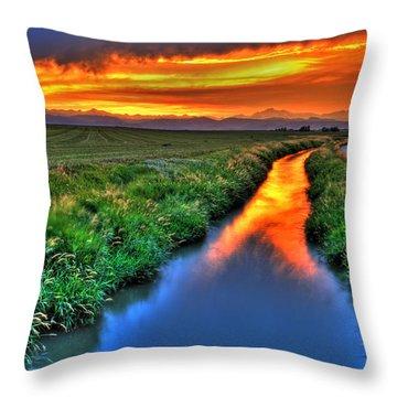 Stream Of Light Throw Pillow by Scott Mahon