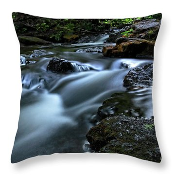 Stream Over Rocks Throw Pillow by Charline Xia