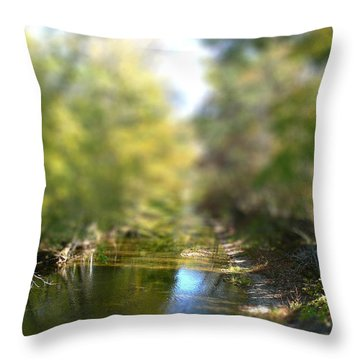 Throw Pillow featuring the photograph Stream Reflections by EricaMaxine  Price