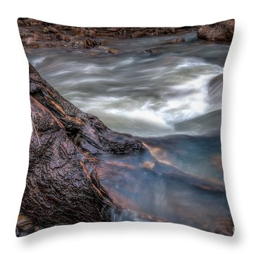 Stream Story Throw Pillow