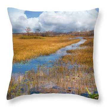 Throw Pillow featuring the photograph Stream Through The Everglades by Debra and Dave Vanderlaan