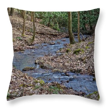 Stream Up The Hollow Throw Pillow by Denise Romano