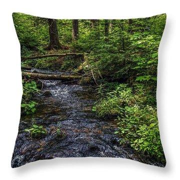 Streaming Throw Pillow