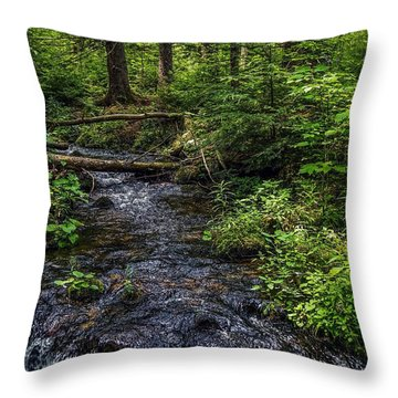 Throw Pillow featuring the photograph Streaming by Kendall McKernon