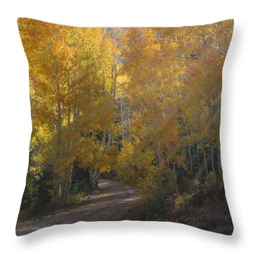 Streaming Light Paiute Trail Fremont Utah Throw Pillow by Deborah Moen