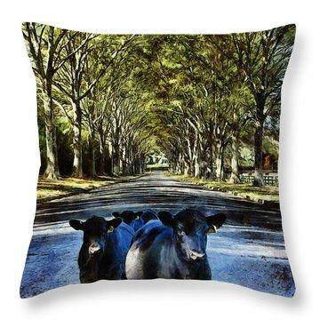 Street Cows Throw Pillow
