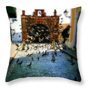 Street Pigeons Throw Pillow by Perry Webster