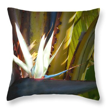 Strelitzia Nicolai Throw Pillow