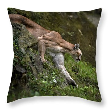 Strength And Beauty Throw Pillow