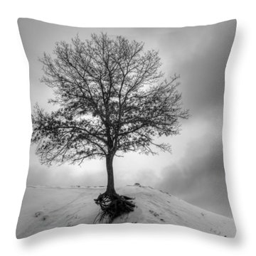 Strength And Hope 2011 Throw Pillow