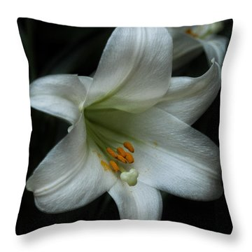 Throw Pillow featuring the photograph Assurance by Connie Handscomb