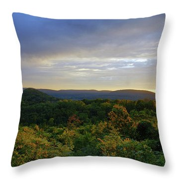 Strength Of The Day Throw Pillow