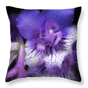 Streptocarpus 'blue Frills' Throw Pillow